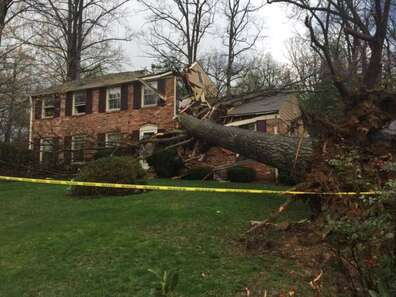 Emergency tree service Lancaster PA